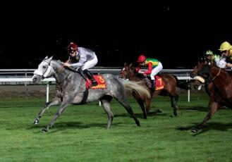 KHATAAB REMPORTE LE FRENCH ARABIAN BREEDERS CHALLENGE...