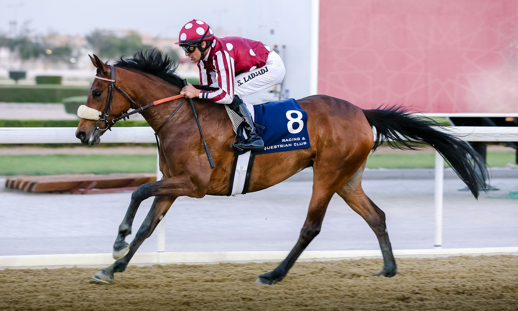 DOUBLE WIN AT DOHA FOR GENERAL's OFFSPRINGS