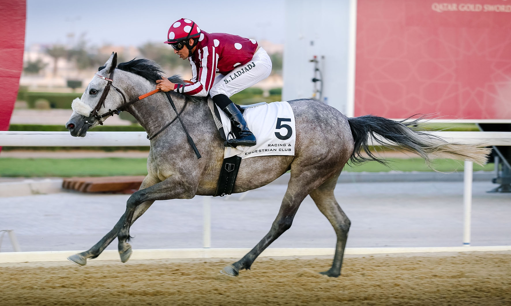 SECOND WIN AT DOHA FOR BINT AMIR