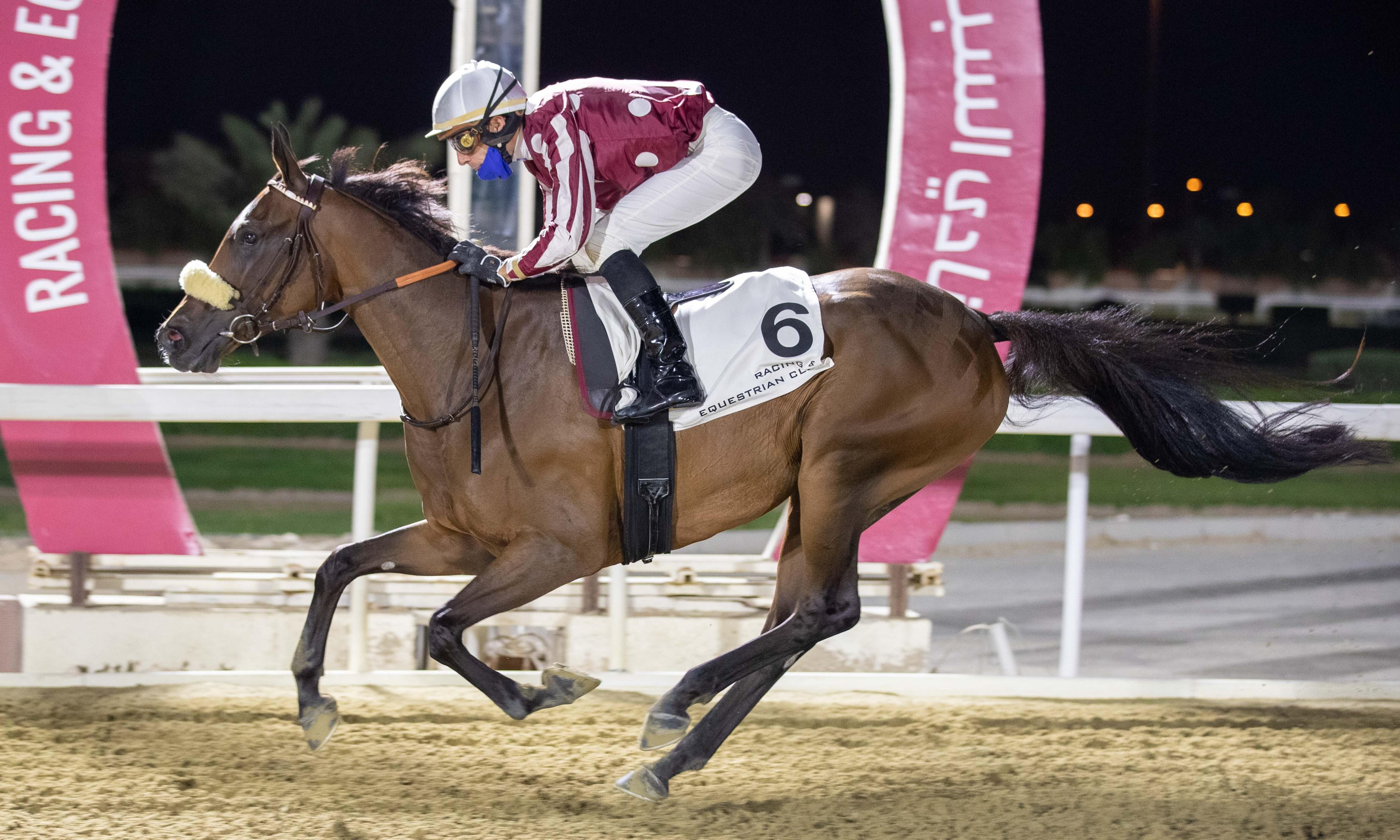 ONE-TWO FOR THE GRAND COURGEON STUD's PROGENIES