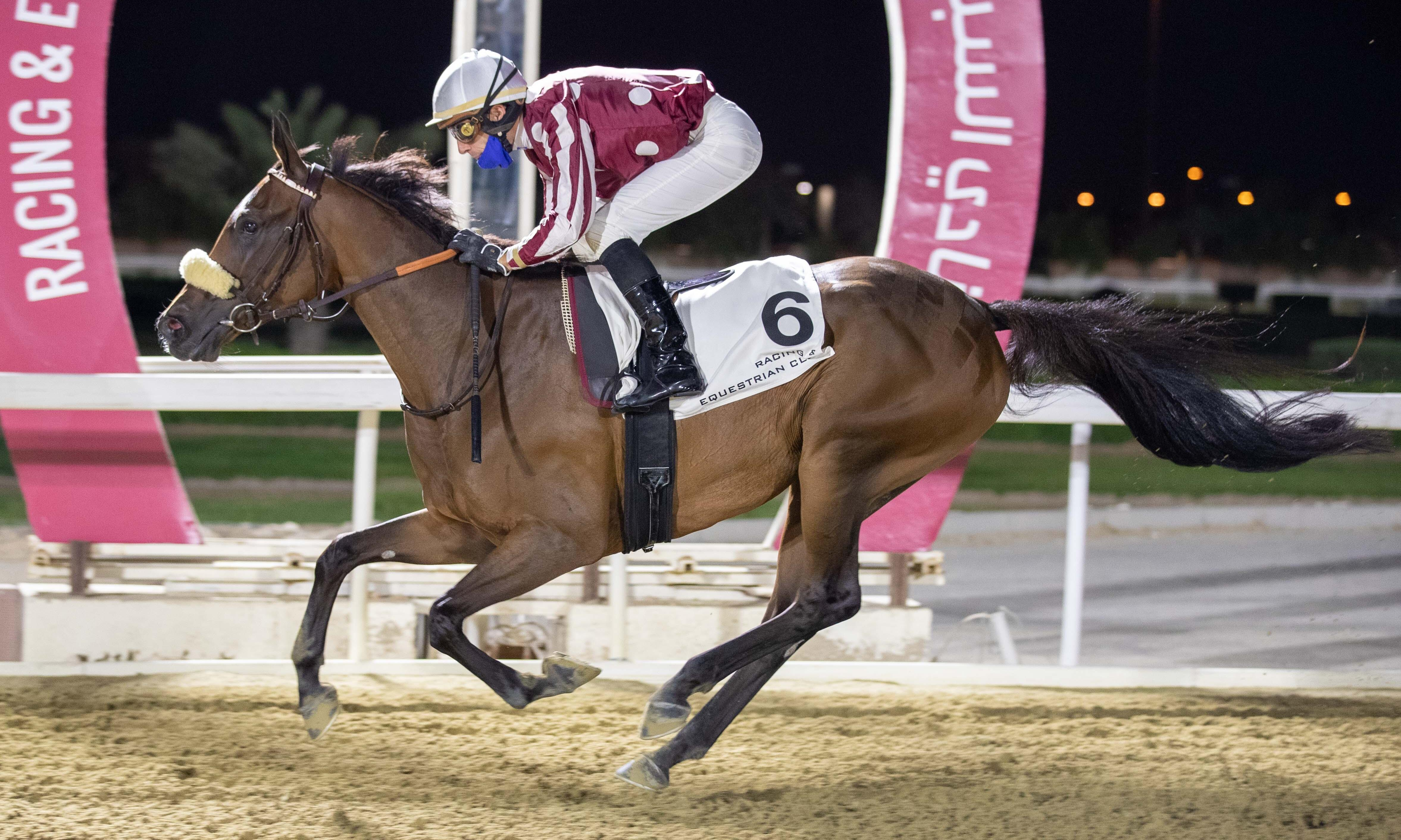 DOUBLE À DOHA POUR LES ELEVES DU HARAS DU GRAND COURGEON