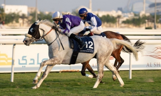 FIRST WINNER FOR AL TAIR
